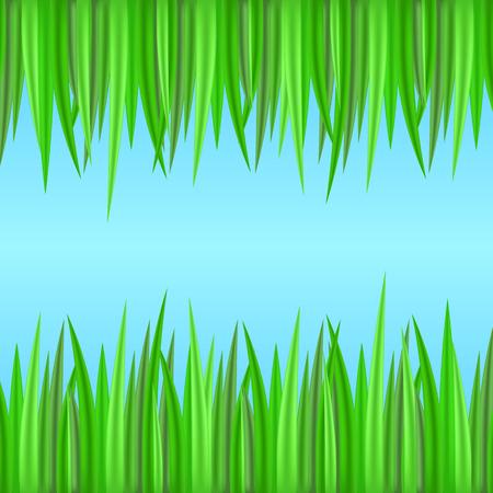Naadloze randen met realistisch gras. Vectorelement voor uw creativiteit