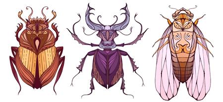 Insekt in Farbe mit einem Stammes-Muster-Set. Doodle Skarabäus, Zikade und Käfer Hirsch vom Hintergrund getrennt. Vektor-Element für Ihre Kreativität
