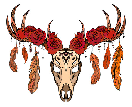 Illustration of a deer skull with roses, feathers and boho pattern. Vector element for tattoo sketch, printing on T-shirts, postcards and your creativity
