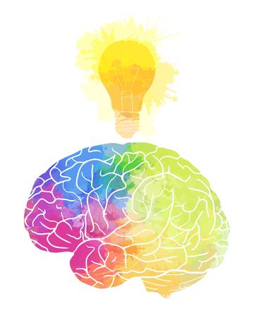 レインボー水彩水しぶきと白い背景に電球を人間の脳。アイデア、インスピレーション。あなたのデザインのベクトル要素