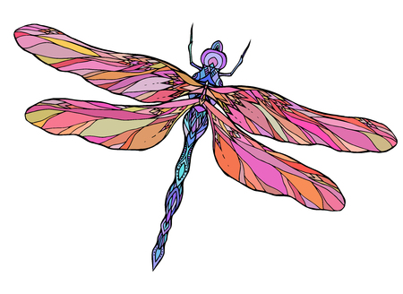 Colorful dragonfly illustration with boho pattern.
