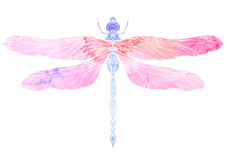 Watercolor illustration of dragonfly with boho pattern. Vector element for your creativity