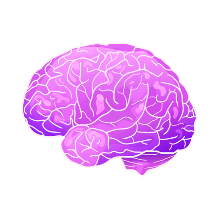 Cartoon neon illustration of a human brain with highlights and shadows. Side view. The object is separate from the background. Vector element for your creativity