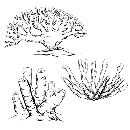 Set of various black and white contour cartoon corals. The object is separate from the background. Linear illustration for printing on T-shirts, covers, sketches of tattoos and your design. Ilustración de vector