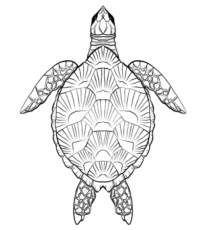 Contour black and white illustration of turtle. The object is separate from the background.