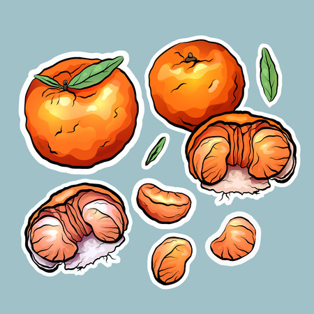 Set of color cartoon stickers of tangerine. The object is separate from the background.