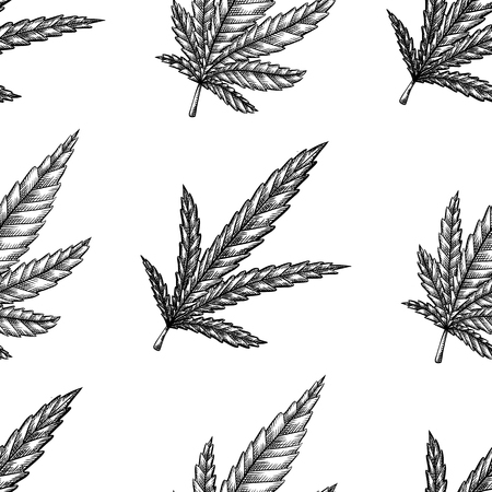 Seamless pattern with leaves of marijuana with hatching.  Vector engraving texture for fabrics, wallpapers and your creativity.