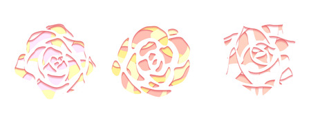 Set of gentle succulents with a top view with 3d background cut out of paper in pastel color on white background. Vector element for your creativity