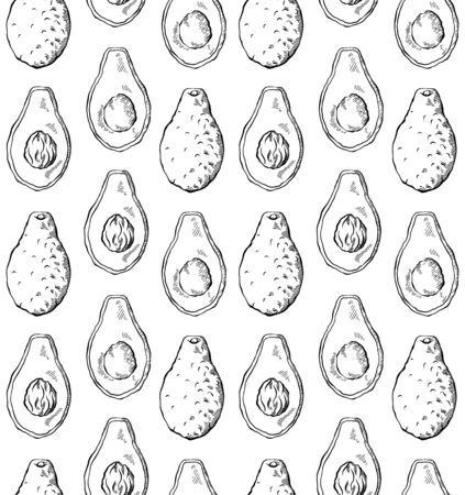 Seamless pattern with avocado sketch in row on white background. Engraving illustration with hatching. Healthy keto diet. Vector texture for wallpapers, fabrics, backgrounds and your design.
