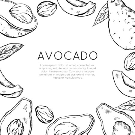 Square card with sketch avocado and place for text. Healthy keto diet. Vegetarian engraving banner. Vector outline template for greeting cards, menu, recipes and your design.