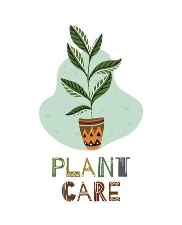 Caring for home plants. Ward over flowers. Ficus with lettering and with a pattern. Plant care. Boho flat illustration for cards, banners, articles and your creativity.