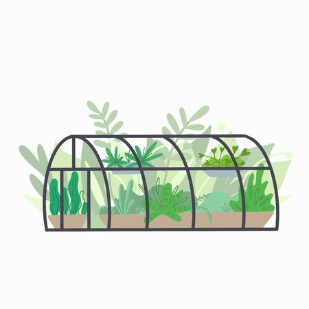 Home semicircular greenhouse with various plants. Glass orangery with flowers and grass. Hobbies and nature interest. Vector flat illustration for cards, stickers, stickers and your creativity.