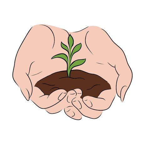 Contour color sketch of female hands holding a sprout with the ground. World Environment Day. Protection and preservation of nature by man. Vector outline drawing for card, banner and your creativity