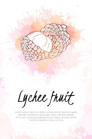 Vertical banner with lychee tropical fruit illustration with pink and red watercolor splashes. Sketch fruit with juicy sprays. template for menus, cards, recipes and your creativity.
