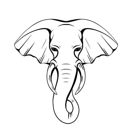 Contour elephant head with trunk and tusks. Wild mammal. Vector silhouette for coloring pages, logos, icons and your creativity.