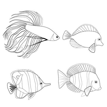 Set of contour different tropical fish. Fish rooster, pennant fish, royal angel. Marine inhabitants. Vector outline silhouette for coloring pages, logos and your design