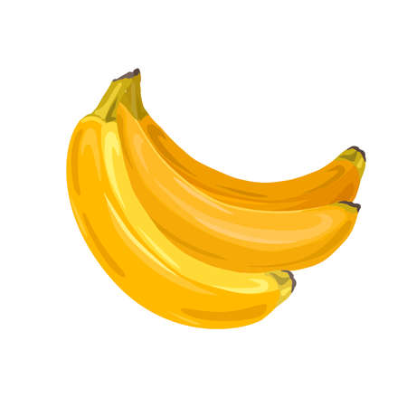 Bunch of juicy tropical bananas on a white background. Vector cartoon fruits for cards, banners, menus, recipes and your creativity