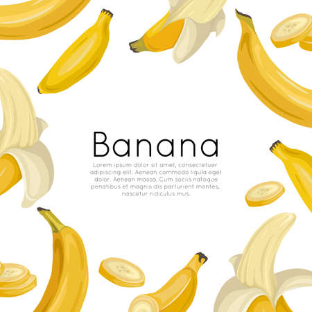 Square postcard with various bananas on a white background and place for text. Tropical fruits and healthy food. Vector template for menus, cards, recipes and your design