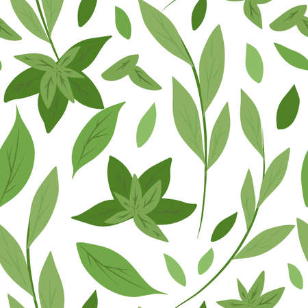 Seamless pattern with simple green leaves and branches on a white background. Herbal natural background. Green tea and mint. Vector flat hand drawn texture for fabrics, wallpapers and your design. 向量圖像
