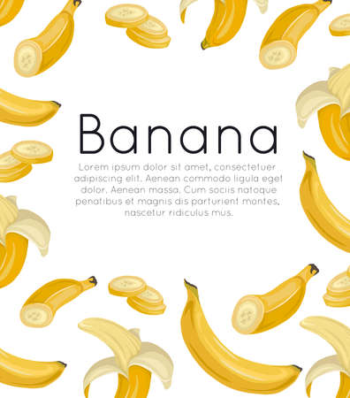 Postcard with various bananas on a white background and place for text. Tropical fruits and healthy food. Vector template for menus, cards, recipes and your design
