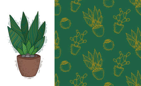 Succulent plant in a clay pot. Wallpaper with home flowers. Fabric with cacti. Set of doodle postcards and patterns. Vertical banner and natural textures. Hand drawn sketch with shading.