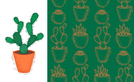 Flat cactus with thorns in a clay pot. Wallpaper with home plants. Fabric with cacti. Set of doodle postcards and patterns. Vertical banner and natural textures. Hand drawn sketch with hatching.