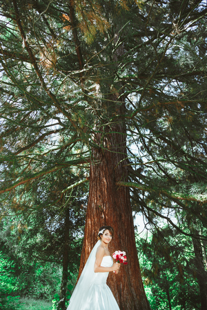 Wedding photo shooting. Bride standing in pine forest with bouquet. Wearing white dress and veil. Outdoor