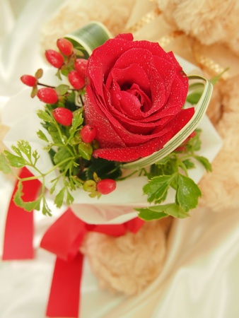 Teddy Bear Hold a Red Rose Bouquet photo
