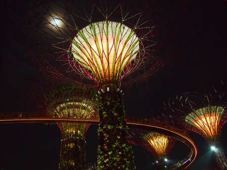 nite: Supertrees at night, the symbol of  Garden by the Bay  in Singapore