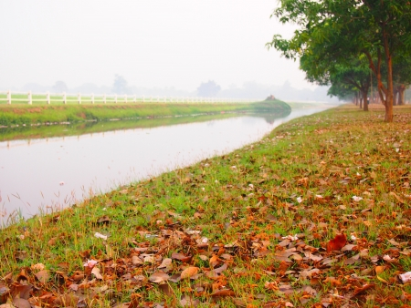 fenceline: farm landscape with colourful grass and canal