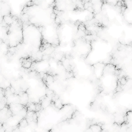 Marble texture isolated on white background vector illustration