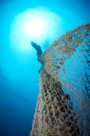 old abandoned fishing net with squid eggs Stock Photo