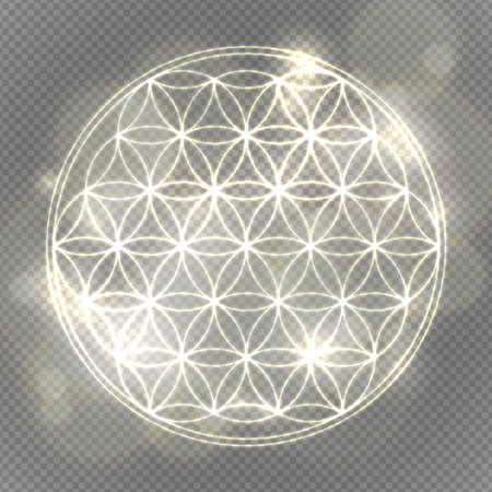 Flower of life. Sacred geometry, vector spiritual symbol. Silver neon vector illustration.
