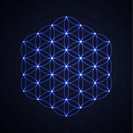 La Flor De La Vida La Geometría Sagrada Vector Símbolo Espiritual