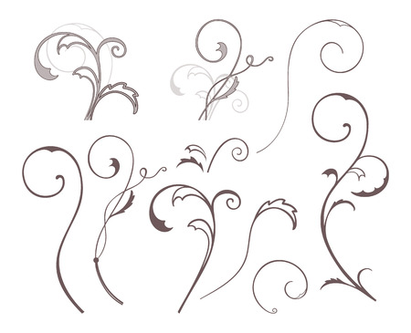 Set of vector swirl floral elements.