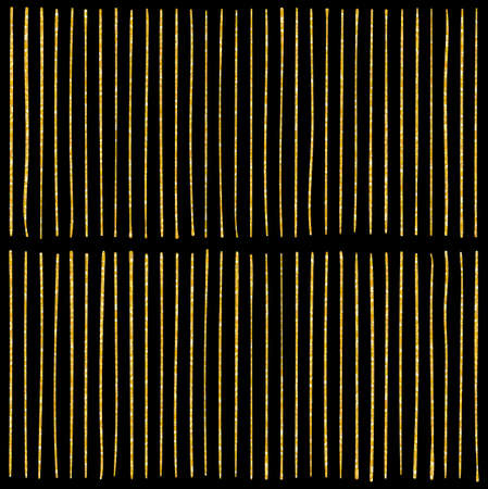 Vector pattern with lines. Black and gold colors.