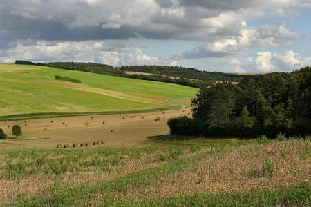 Summer in the Bourgogne, France. Stock Photo