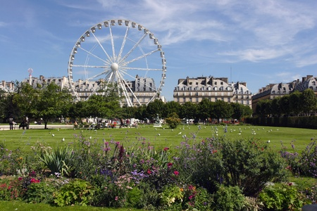 Park outside the Louvre in Paris. Ferris wheel at Jardin de Tuileries in Paris, France photo