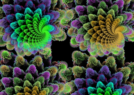 fractals: Coral carpet  Abstract fractal pattern  Computer generated graphics