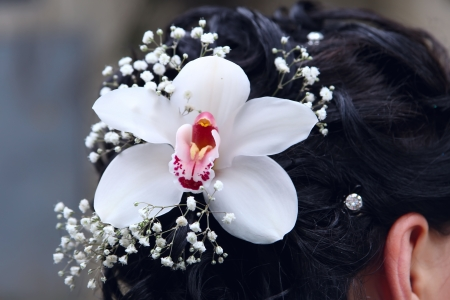 Flower in the hair of the bride photo