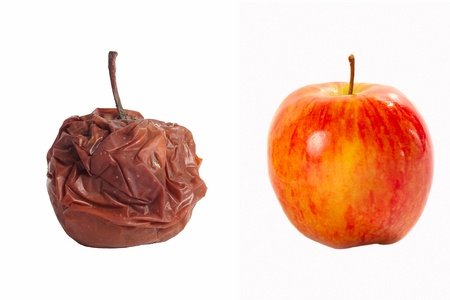 Rotten apple and fresh apple on a white background
