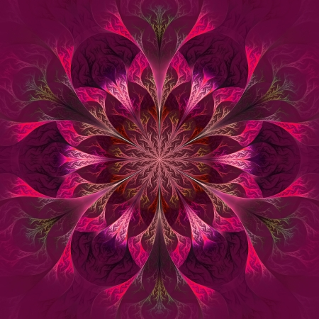 claret: Beautiful fractal flower in purple, claret and red. Computer generated graphics. Stock Photo