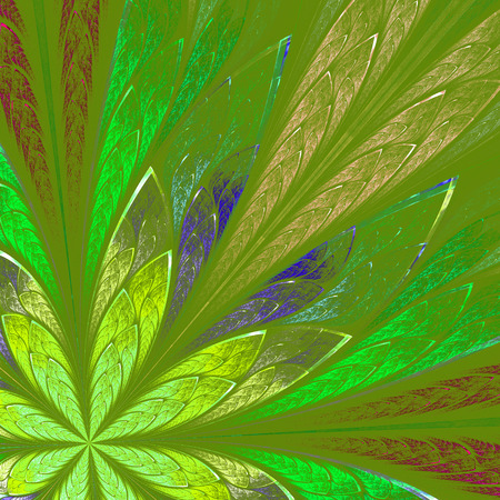 Multicolor fractal flower on green background  Computer generated graphics  photo