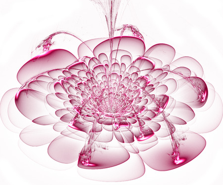 Beautiful pink flower on white background  Computer generated graphics