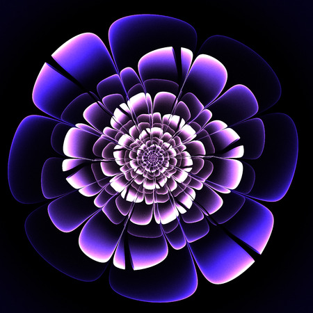 Beautiful purple flower on black background. Computer generated graphics. Stock Photo
