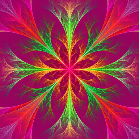vinous: Beautiful multicolor fractal flower. Collection - frosty pattern. On vinous.