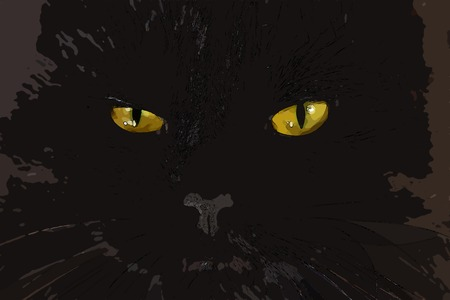 severe: Severe black cat looking to you with bright yellow eyes