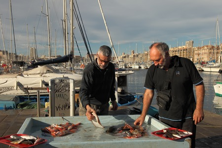 mediterranean coast: France, Marseille -November 19, 2015.:Selling fish at the fish market of Old Port of Marseille (Vieux-Port),.Marseille is Frances largest city on the Mediterranean coast and largest commercial port. November 19, 2015.