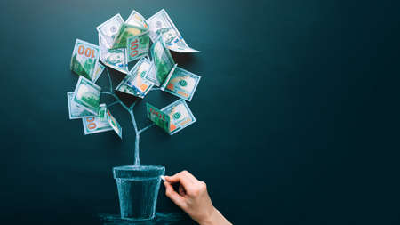 Hand drawing money tree made by us dollar bills. Business, saving, growth, economic concept. Investors strategy, funding symbol. Copy space.