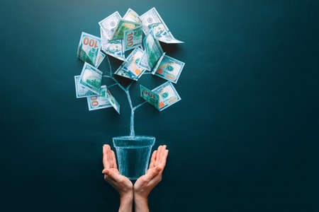 Hands holding money tree made by us dollar bills. Business, saving, growth, economic concept. Investors strategy, funding symbol. Copy space. 版權商用圖片